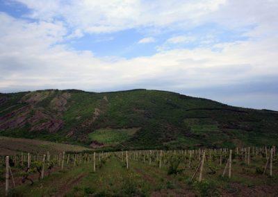 горный хребет Малбанын-Хыры