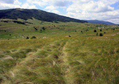 поездки в горы на плато Караби-Яйла