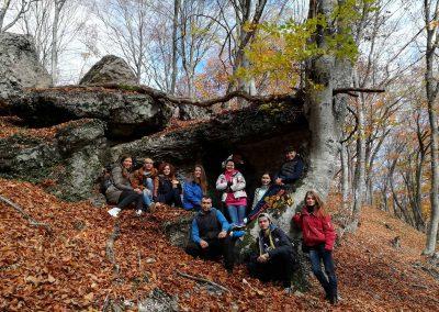 каменные грибы в алуште