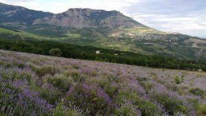 джип туры в горах