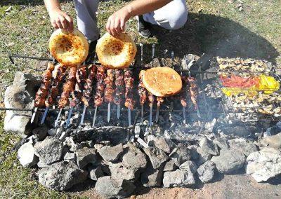 Пикник с шашлыком