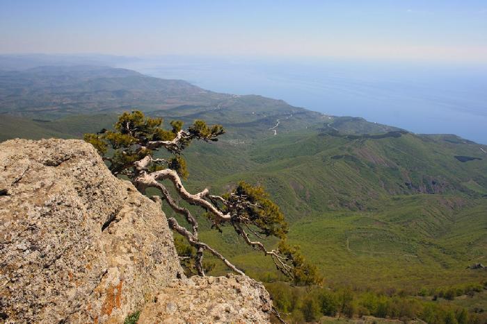 Демерджи панорама на восточное побережье