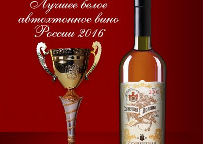 Солнечная Долина Награда 2016г